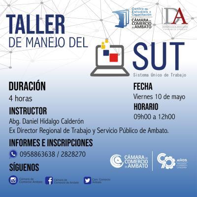 MANEJO DEL SUT Y LA PÁGINA WEB DEL IESS