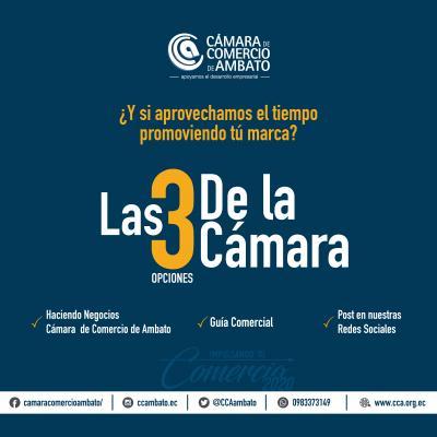 LAS 3 OPCIONES DE LA CÁMARA